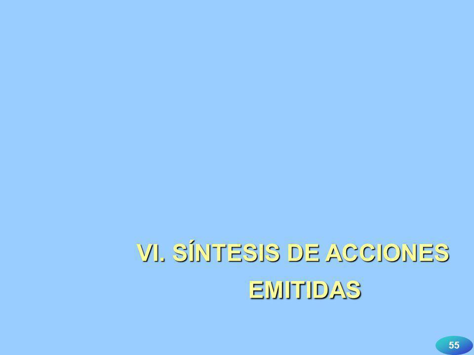 VI. SÍNTESIS DE ACCIONES EMITIDAS