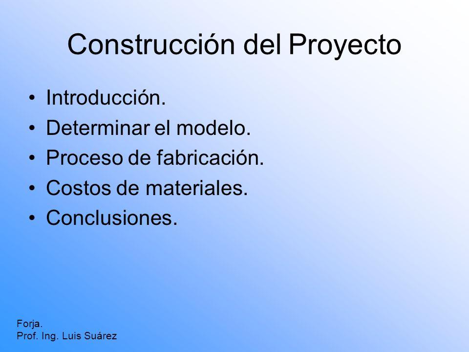 Construcción del Proyecto