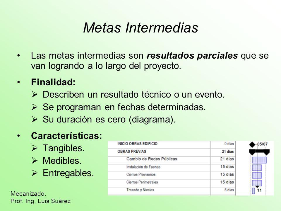Metas Intermedias Las metas intermedias son resultados parciales que se van logrando a lo largo del proyecto.