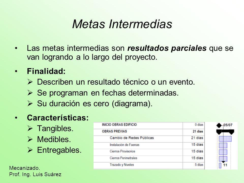 Metas IntermediasLas metas intermedias son resultados parciales que se van logrando a lo largo del proyecto.