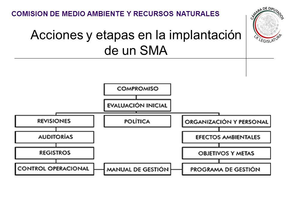 Acciones y etapas en la implantación de un SMA