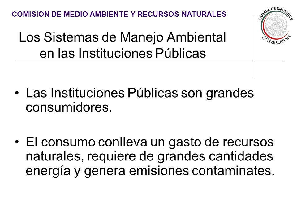 Los Sistemas de Manejo Ambiental en las Instituciones Públicas