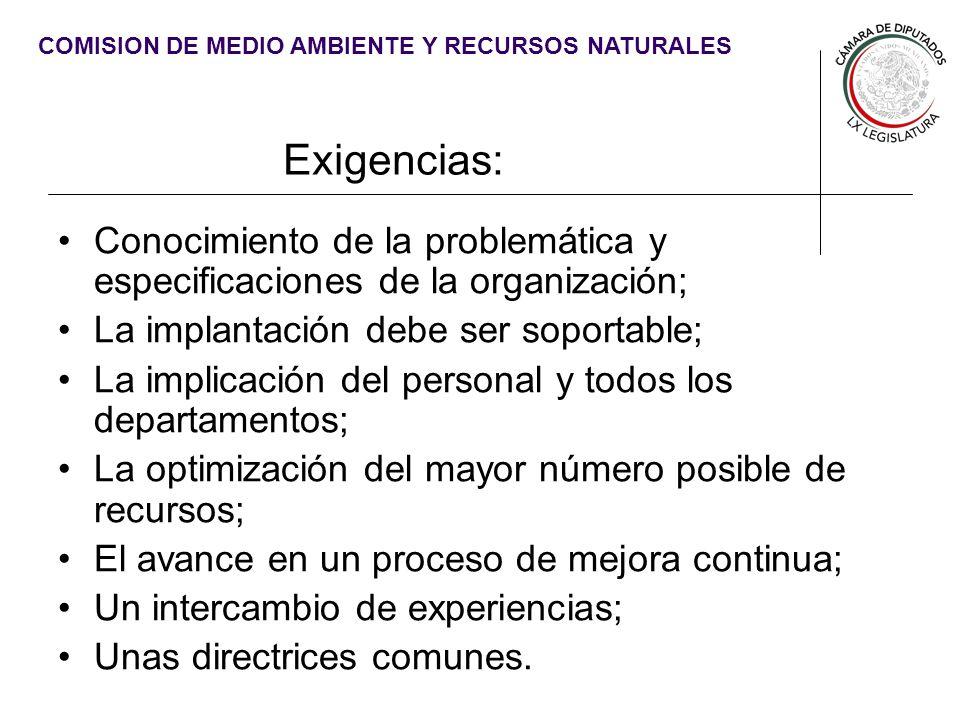 Exigencias: Conocimiento de la problemática y especificaciones de la organización; La implantación debe ser soportable;