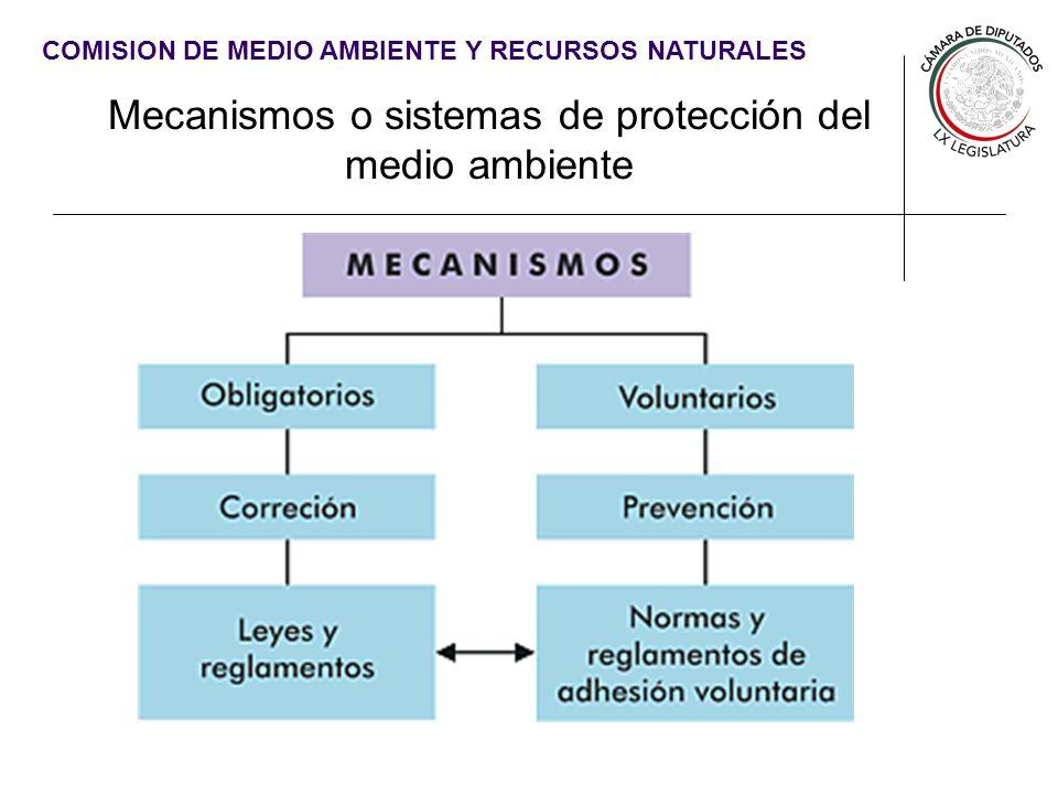 Mecanismos o sistemas de protección del medio ambiente