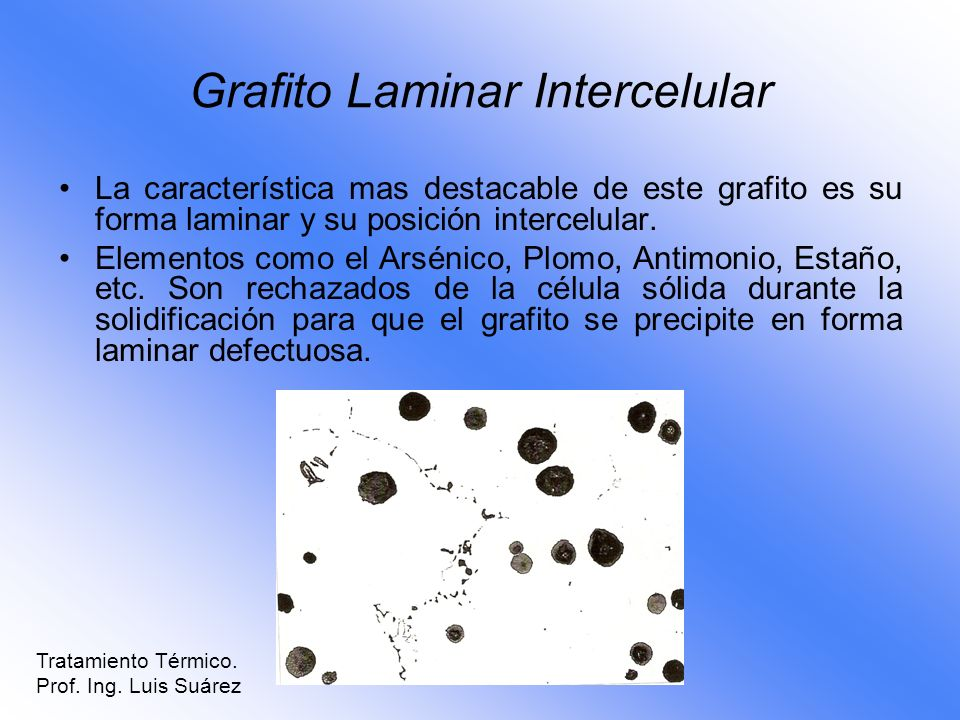 Grafito Laminar Intercelular