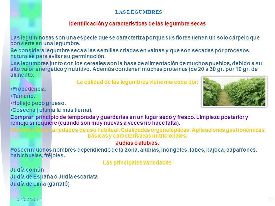 Identificación y características de las legumbre secas