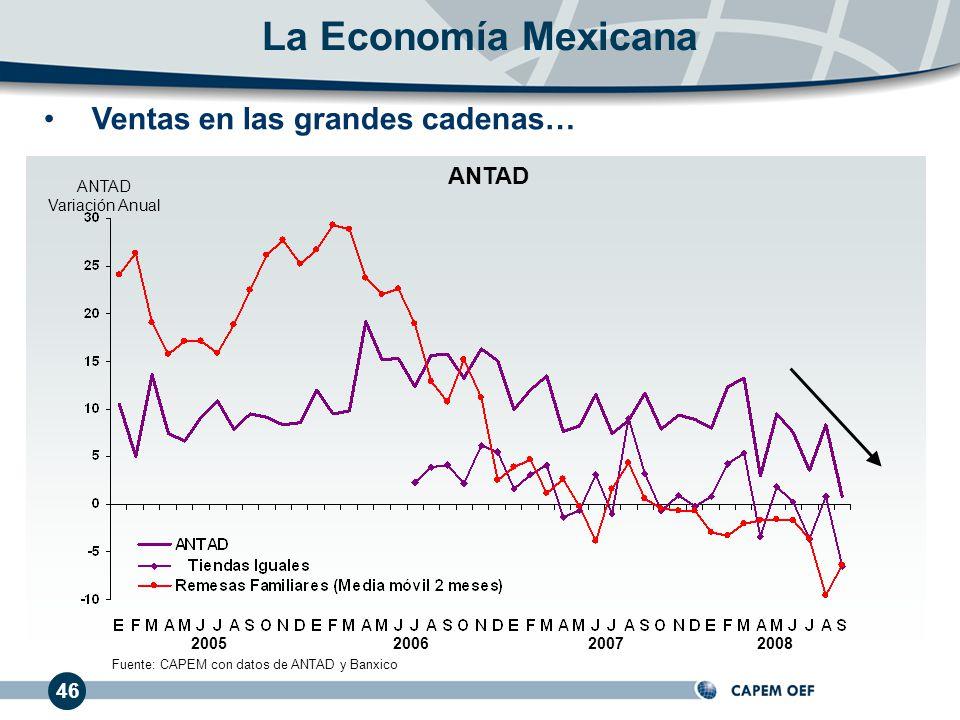 La Economía Mexicana Ventas en las grandes cadenas… ANTAD 46 ANTAD