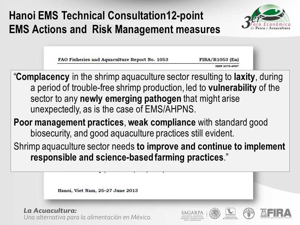 Hanoi EMS Technical Consultation12-point EMS Actions and Risk Management measures