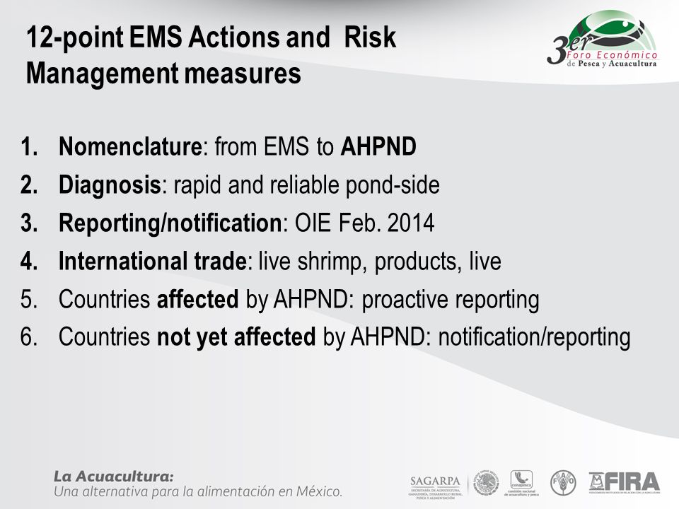 12-point EMS Actions and Risk Management measures
