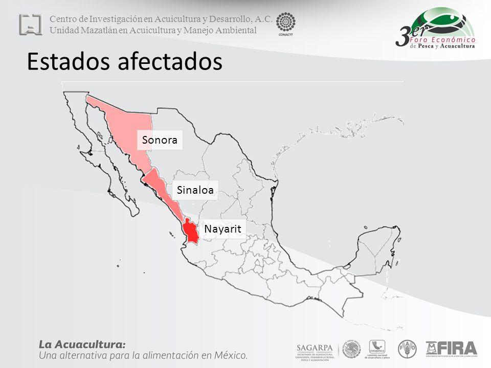 Estados afectados Sonora Sinaloa Nayarit
