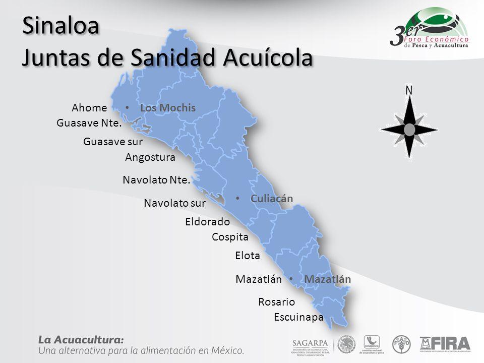 Sinaloa Juntas de Sanidad Acuícola