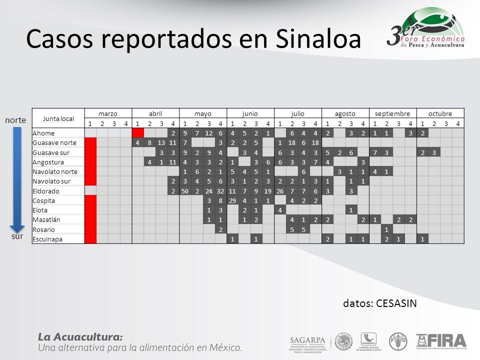 Casos reportados en Sinaloa