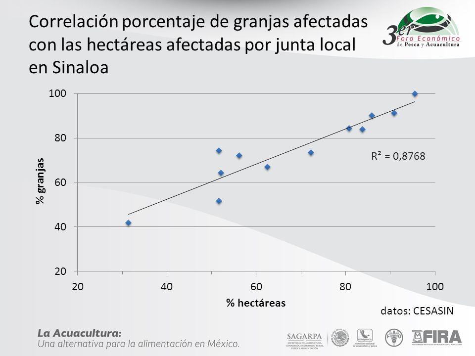Correlación porcentaje de granjas afectadas con las hectáreas afectadas por junta local en Sinaloa