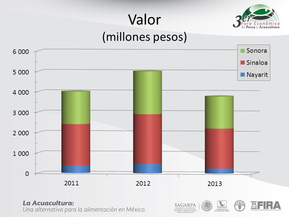 Valor (millones pesos)