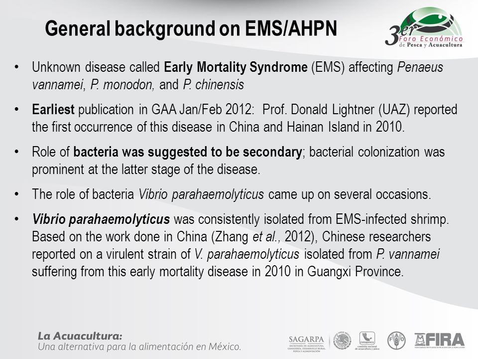 General background on EMS/AHPN