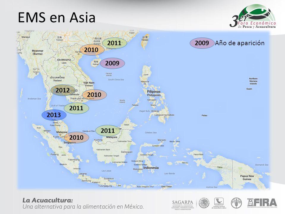 EMS en Asia 2011 2009 Año de aparición 2010 2009 2012 2013