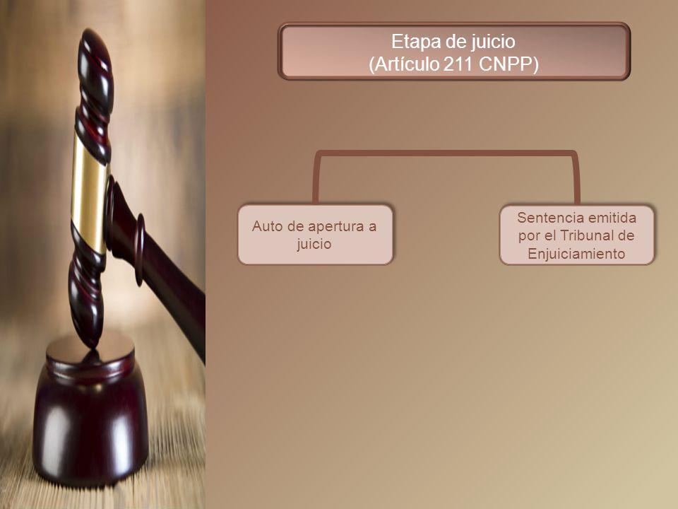 Etapa de juicio (Artículo 211 CNPP)