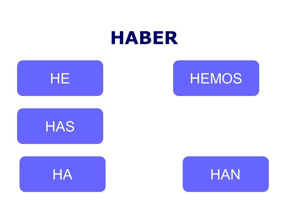 HABER HE HEMOS HAS HA HAN