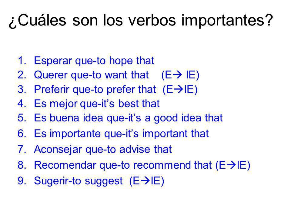 ¿Cuáles son los verbos importantes