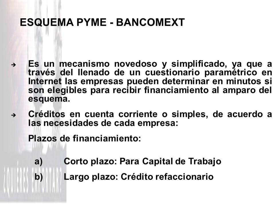 ESQUEMA PYME - BANCOMEXT