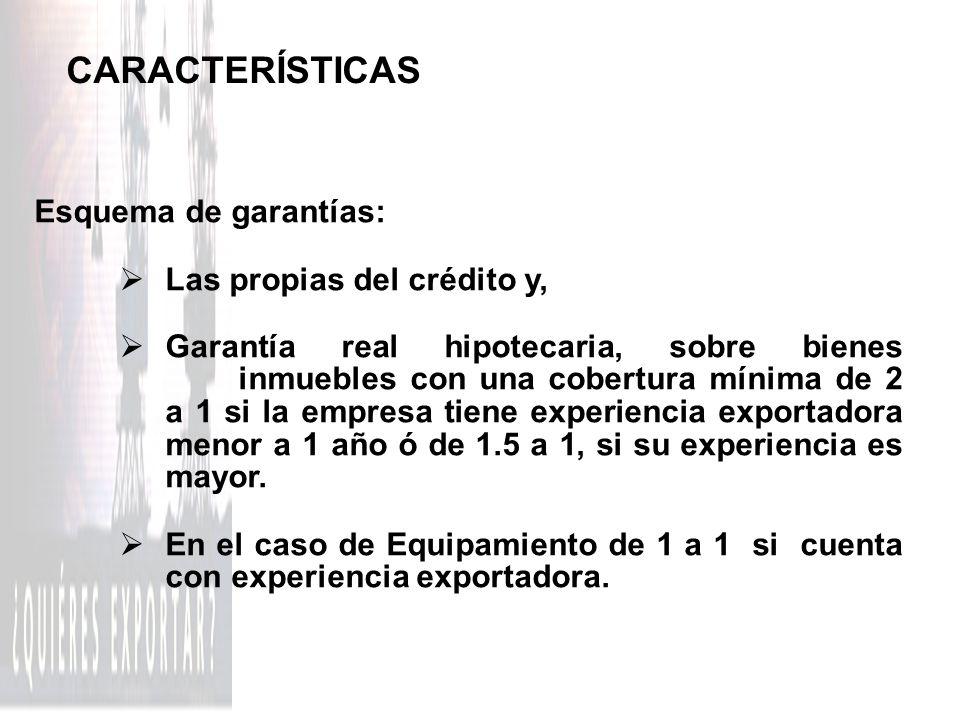 CARACTERÍSTICAS Esquema de garantías: Las propias del crédito y,