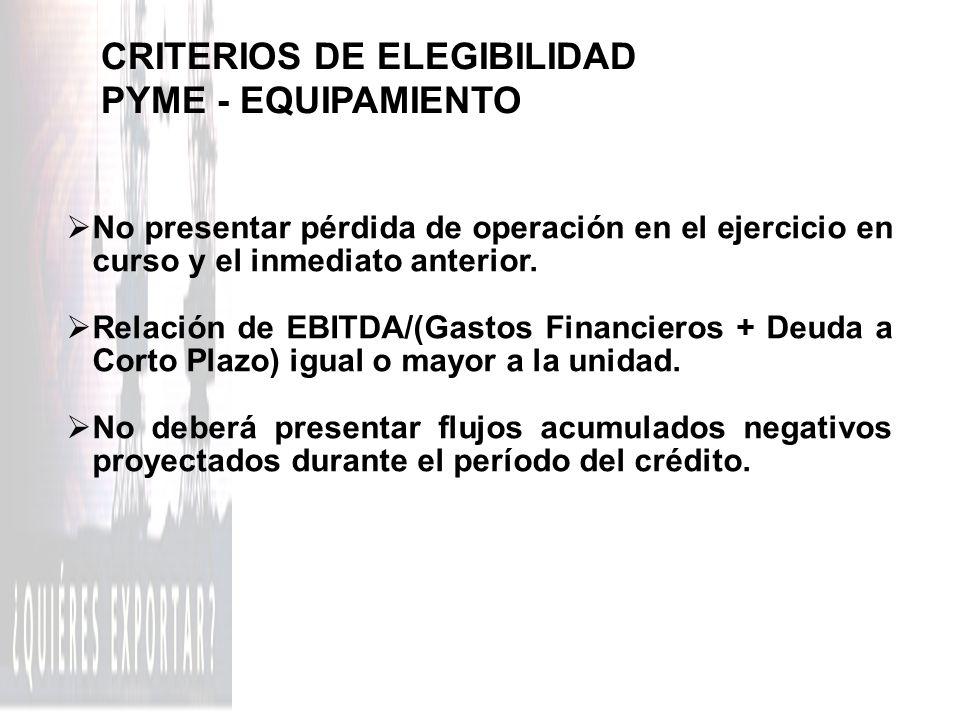 CRITERIOS DE ELEGIBILIDAD PYME - EQUIPAMIENTO