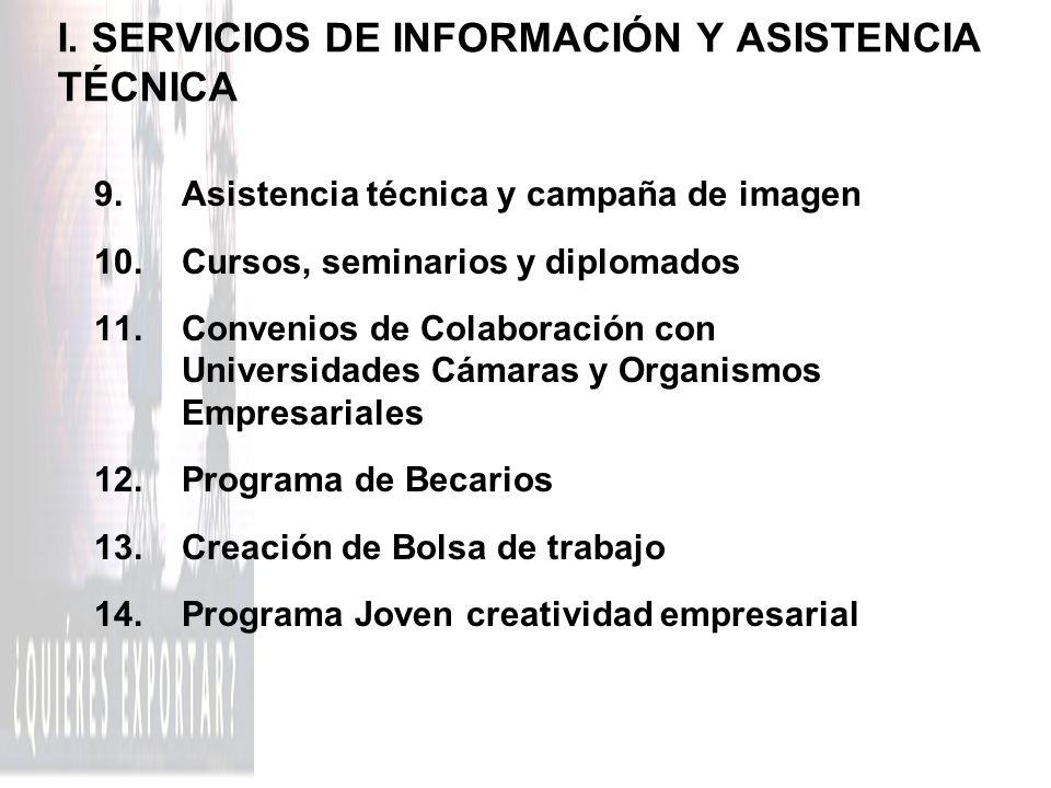 I. SERVICIOS DE INFORMACIÓN Y ASISTENCIA TÉCNICA