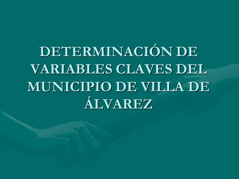 DETERMINACIÓN DE VARIABLES CLAVES DEL MUNICIPIO DE VILLA DE ÁLVAREZ