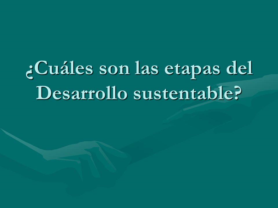 ¿Cuáles son las etapas del Desarrollo sustentable