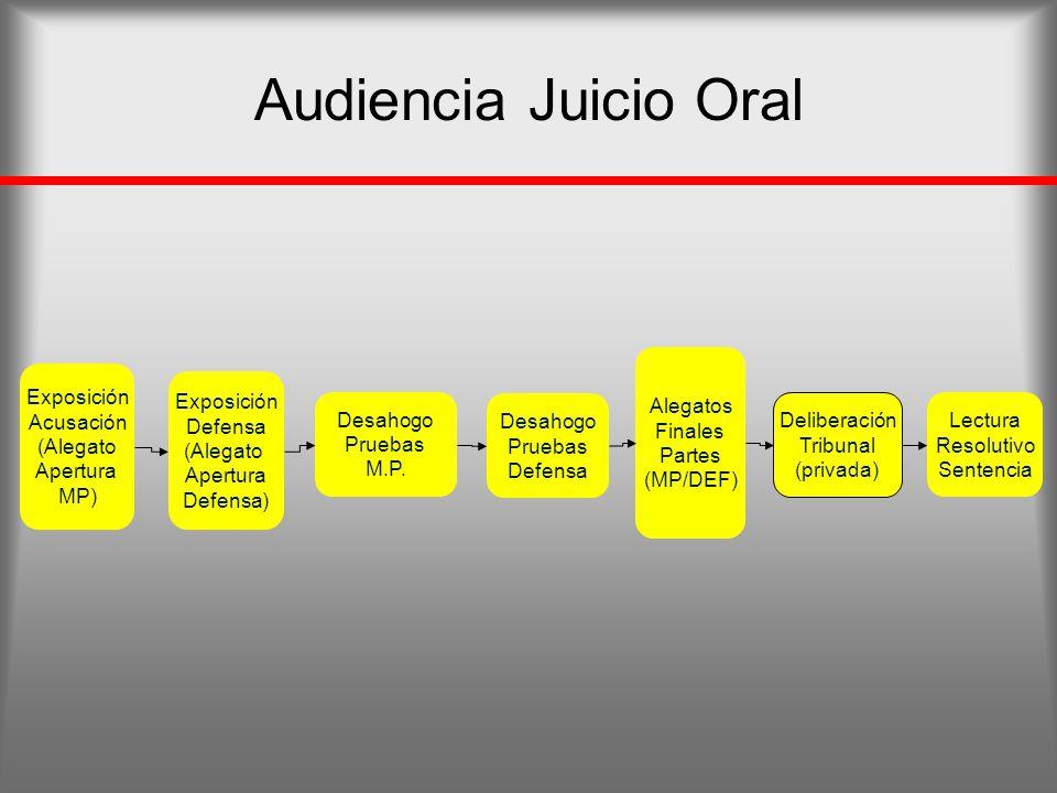 Audiencia Juicio Oral Alegatos Finales Partes (MP/DEF) Exposición