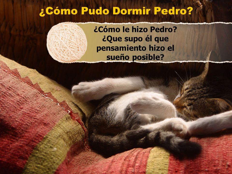 ¿Cómo Pudo Dormir Pedro