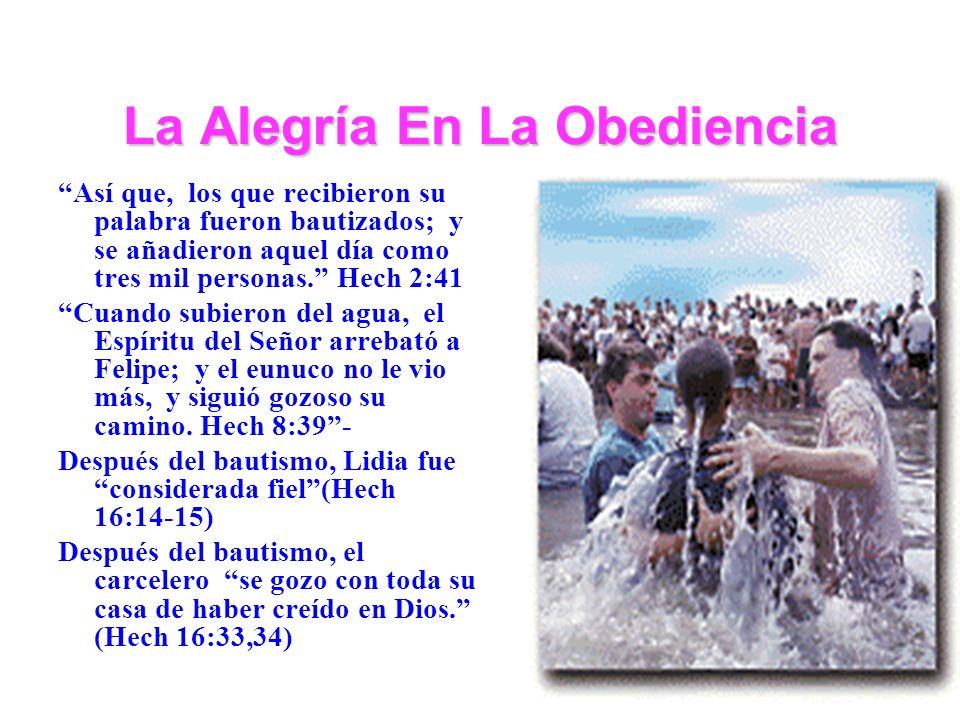 La Alegría En La Obediencia