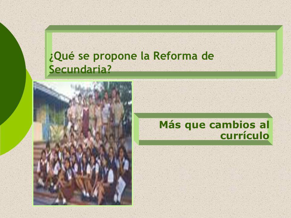 ¿Qué se propone la Reforma de Secundaria