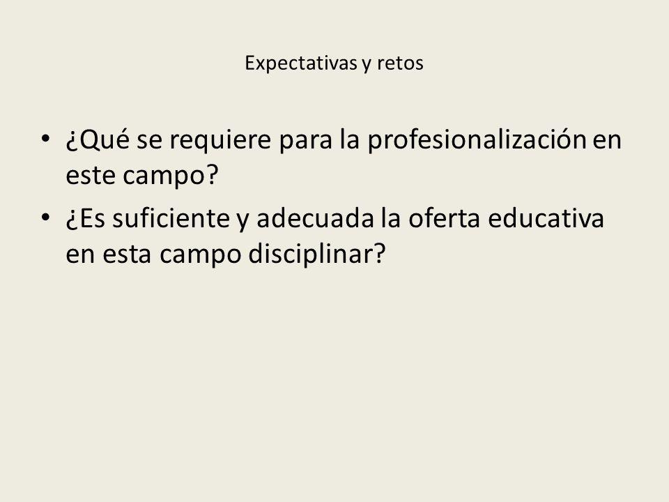¿Qué se requiere para la profesionalización en este campo