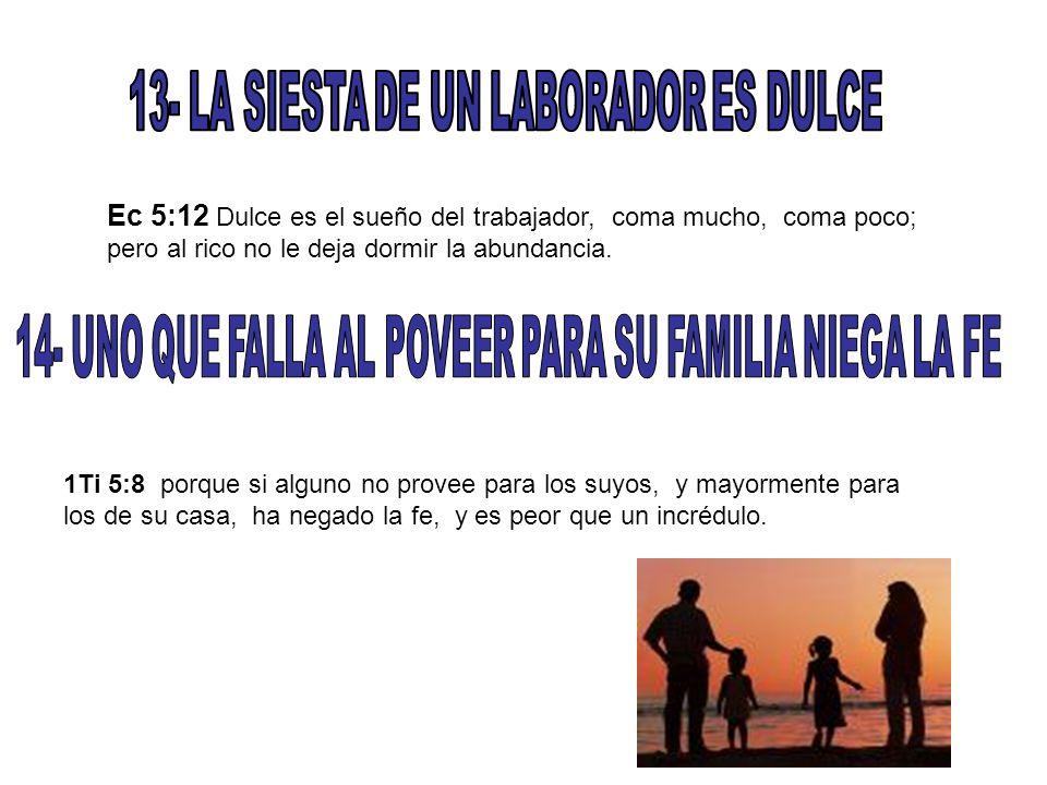 13- LA SIESTA DE UN LABORADOR ES DULCE