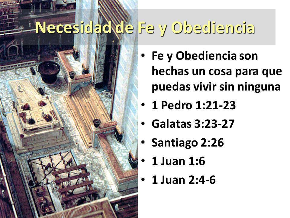 Necesidad de Fe y Obediencia