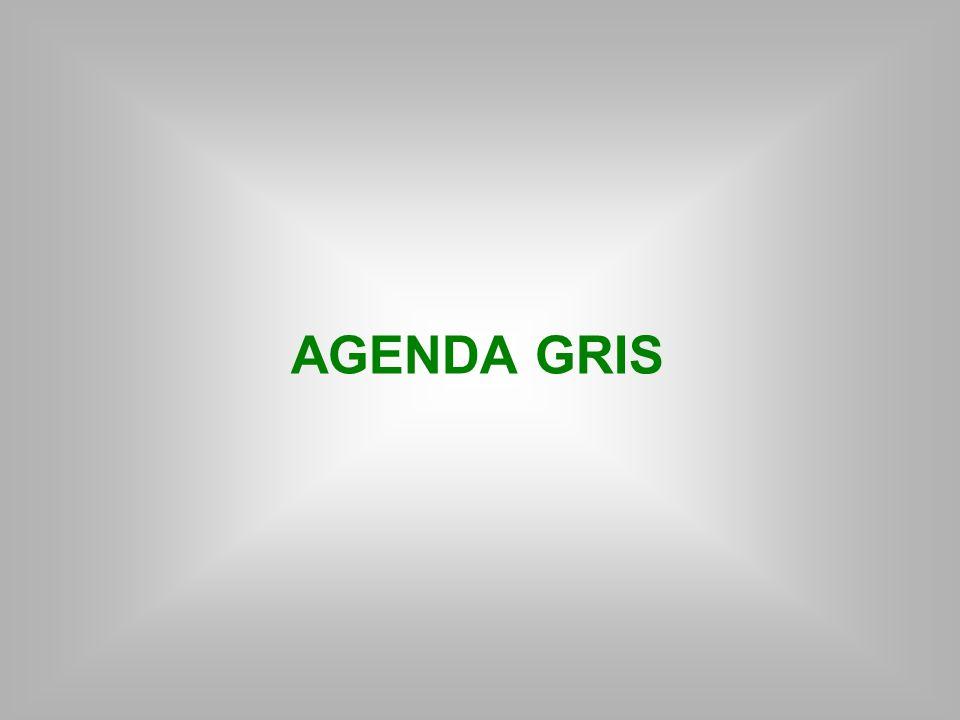 AGENDA GRIS