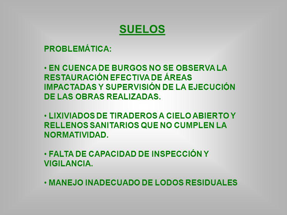 SUELOS PROBLEMÁTICA:
