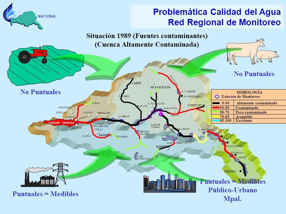 Situación 1989 (Fuentes contaminantes) (Cuenca Altamente Contaminada)