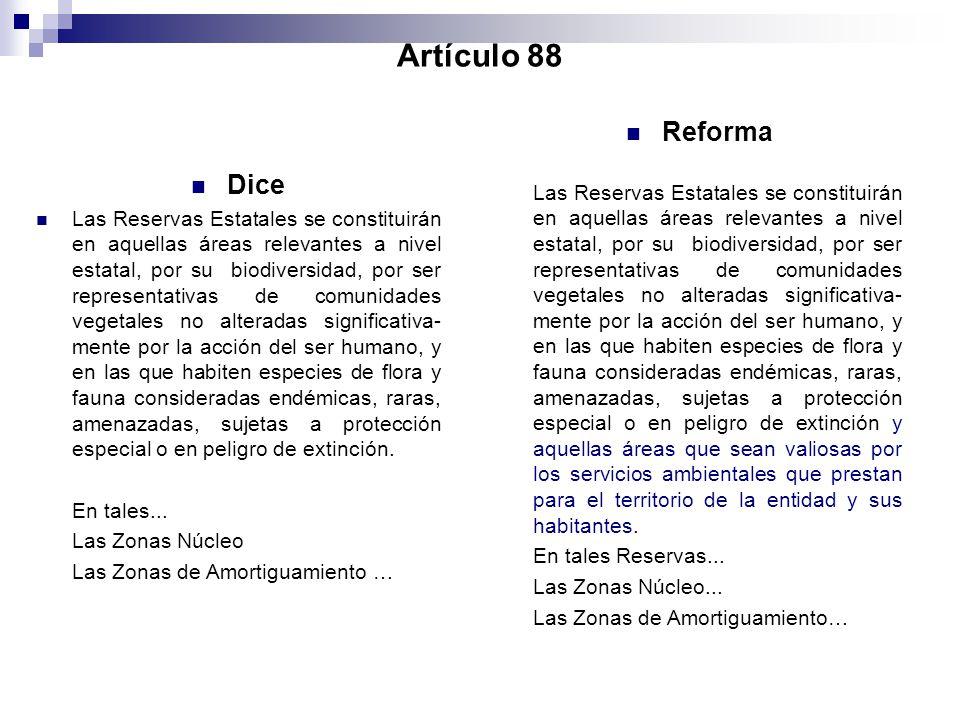 Artículo 88 Reforma.