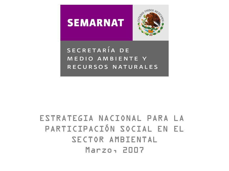 ESTRATEGIA NACIONAL PARA LA PARTICIPACIÓN SOCIAL EN EL
