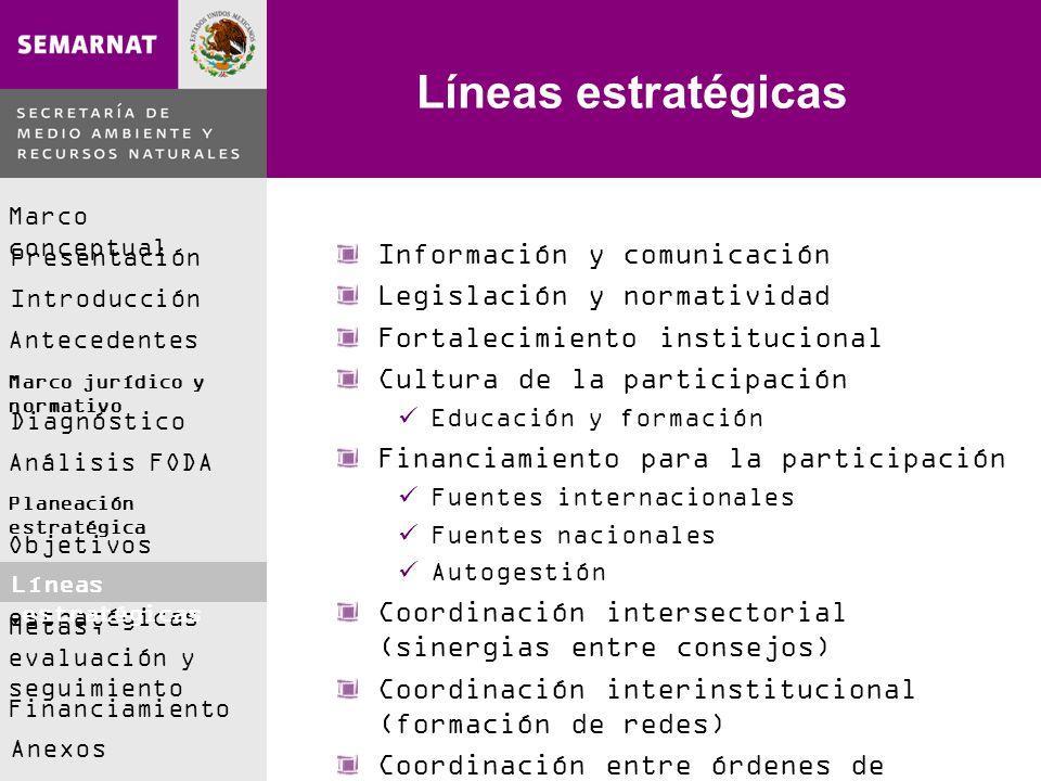 Líneas estratégicas Información y comunicación