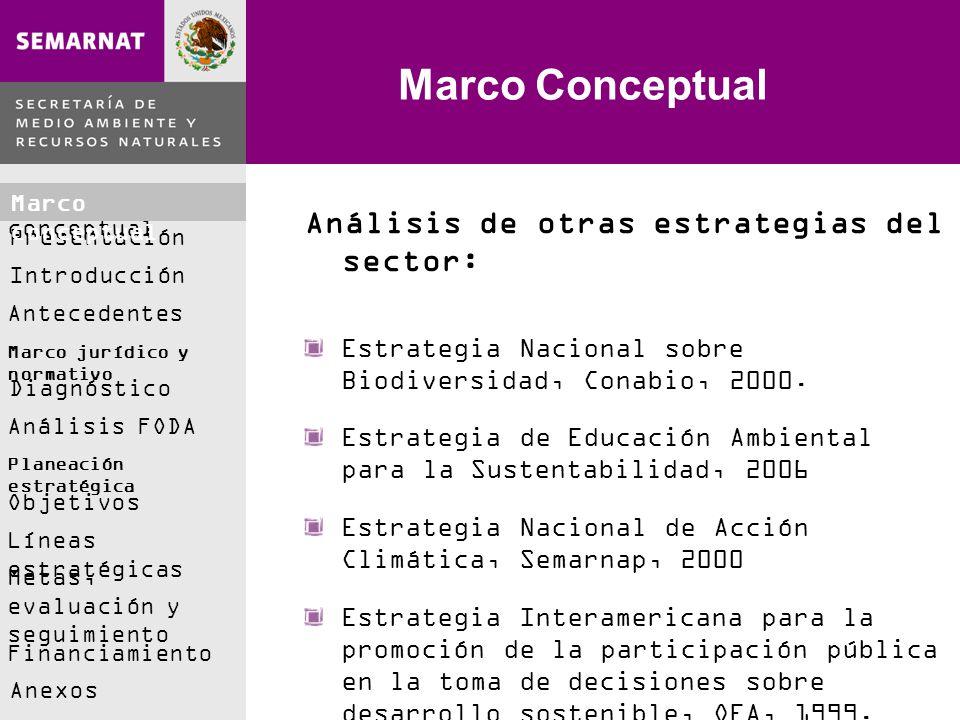 Marco Conceptual Análisis de otras estrategias del sector: