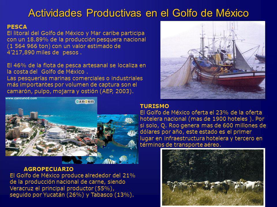 Actividades Productivas en el Golfo de México