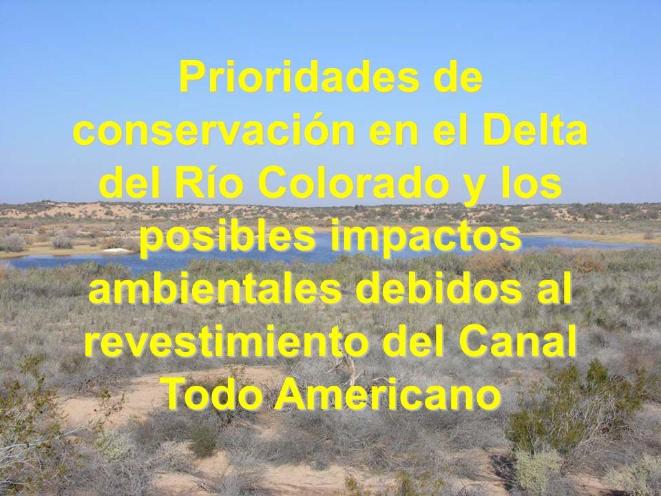 Prioridades de conservación en el Delta del Río Colorado y los posibles impactos ambientales debidos al revestimiento del Canal Todo Americano