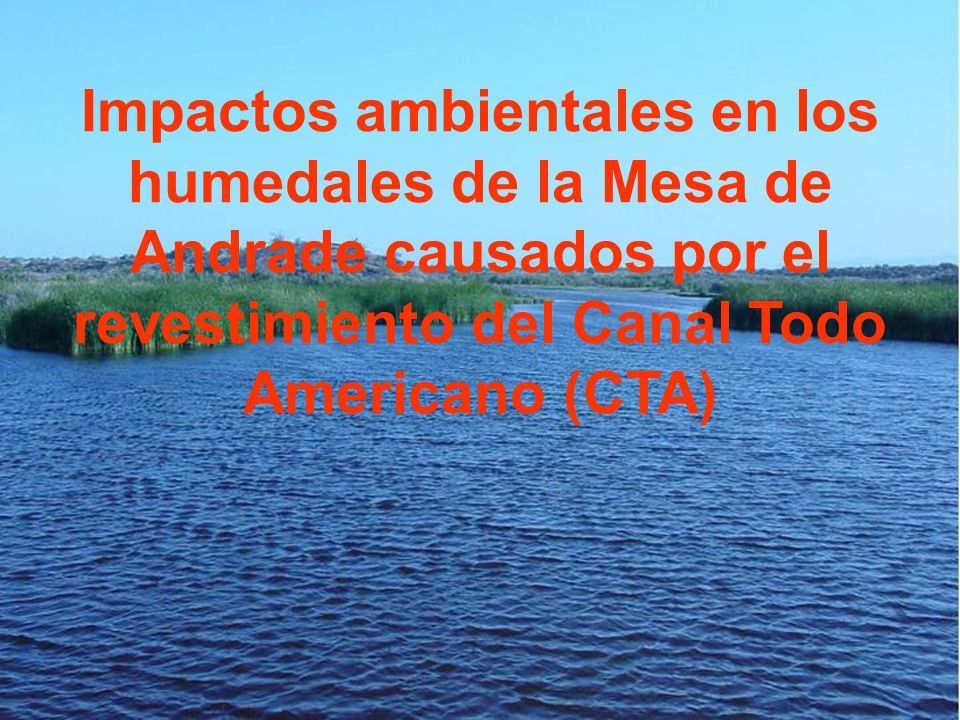 Impactos ambientales en los humedales de la Mesa de Andrade causados por el revestimiento del Canal Todo Americano (CTA)