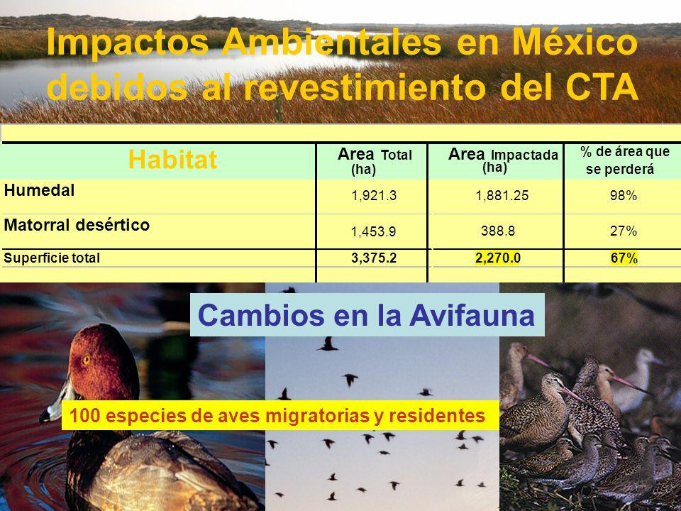 Impactos Ambientales en México debidos al revestimiento del CTA