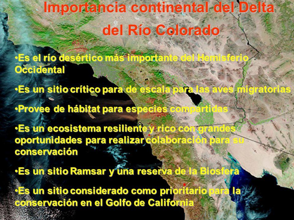 Importancia continental del Delta