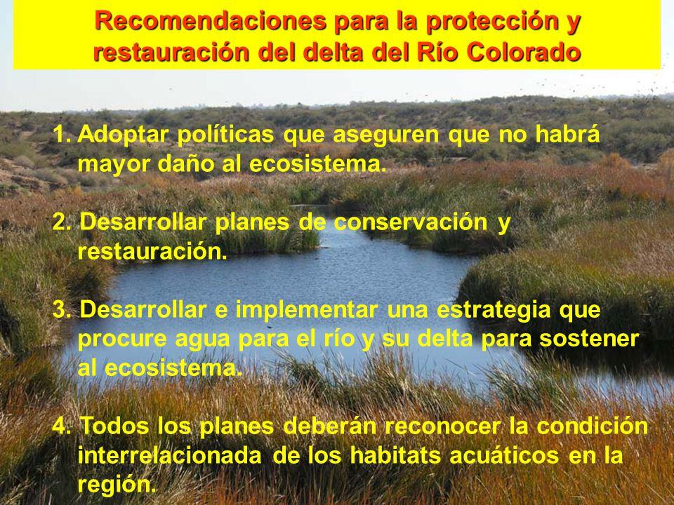 Recomendaciones para la protección y restauración del delta del Río Colorado