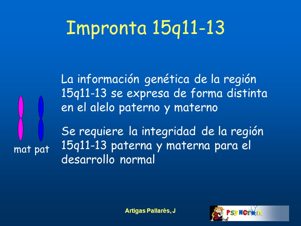 Impronta 15q11-13La información genética de la región 15q11-13 se expresa de forma distinta en el alelo paterno y materno.